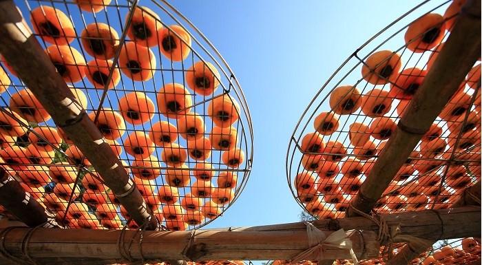 suszenie żywności na słońcu